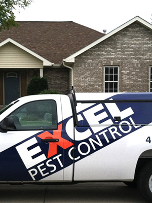 Residential pest control options from Excel Pest Control